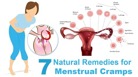 peek me naturals period relief 7 remedies for menstrual crs