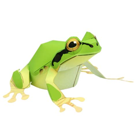 Papercraft Frog - animal papercraft tree frog papercraft paradise