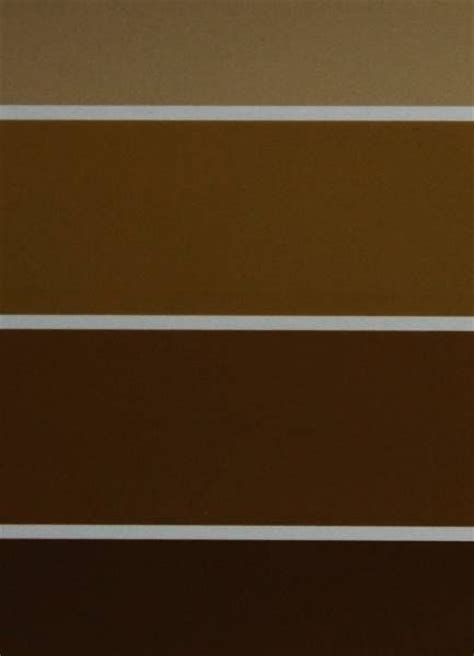 shades of brown paint 300 best all things brown images on pinterest