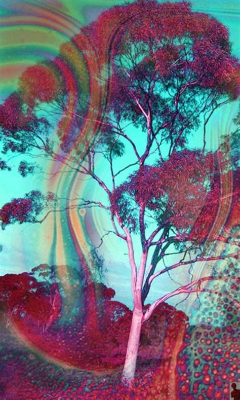 the pattern you see on acid 25 best ideas about lsd on pinterest trippy