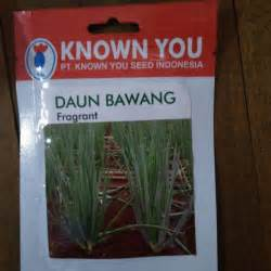 Bibit Daun Bawang Merah jual bibit benih daun bawang fragrant 5 gram dadi makmur