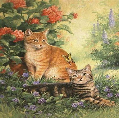 cat  butterfly wallpaper wallpapersafari
