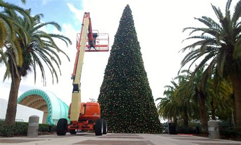 lake eola christmas tree video city of orlando tree is up at lake eola park in downtown orlando