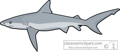 Great White Shark Clip by Tiger Shark Clipart Clipart Suggest