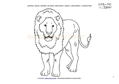 male lion coloring pages tiny baby cub lineart by lil male lion coloring page
