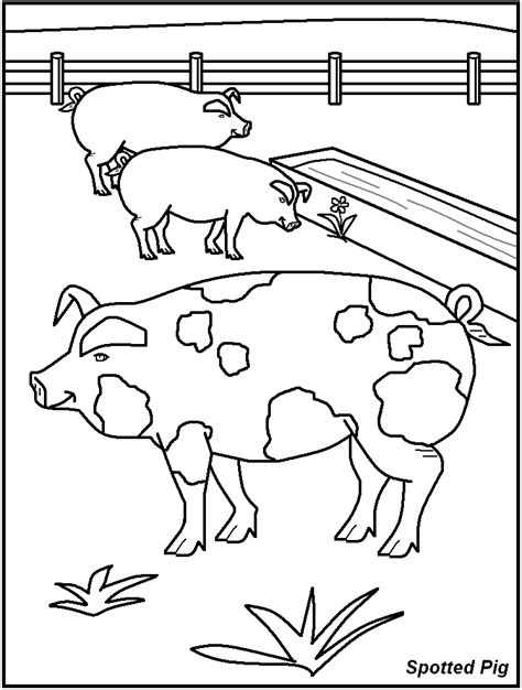 coloring pages of dangerous animals colour in farm animals coloring home