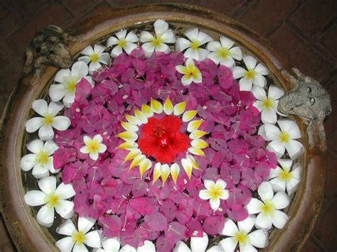 43 best images about botanical splendor on pinterest floral arrangements bird of paradise and