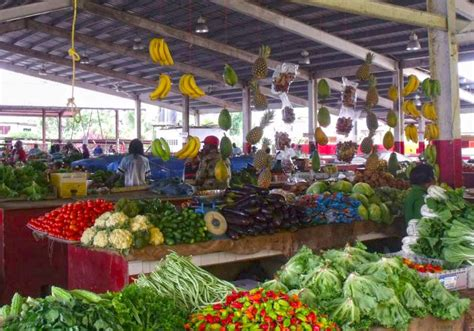 d r fruit market dr michael neafsey in