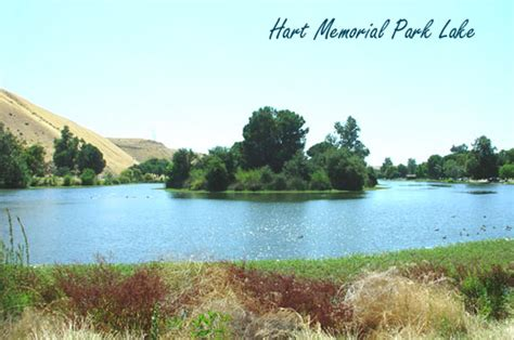 park bakersfield northeast bakersfield homes bakersfield ca homes for sale