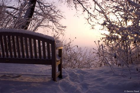 Covered Bench Snow Covered Bench Dennis Flood Photography