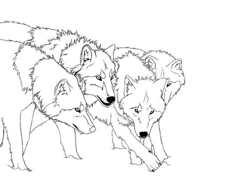 realistic wolf coloring pages coloring home