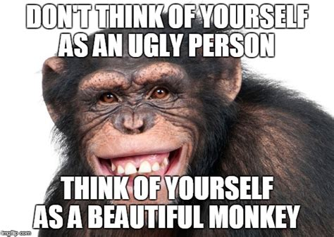Monkey Meme - angry monkey meme www imgkid com the image kid has it
