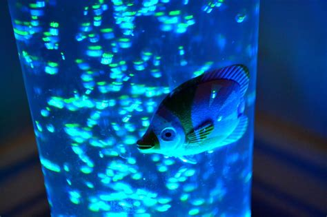 home bubble fish l fish light tube localbrush info