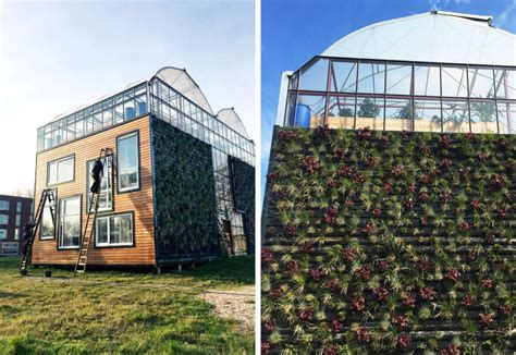 design brief of greenhouse chibb house giant greenhouse in rotterdam doubles as a