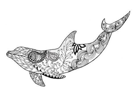 advanced dolphin coloring pages 2775 best images about stencils coloring pages on