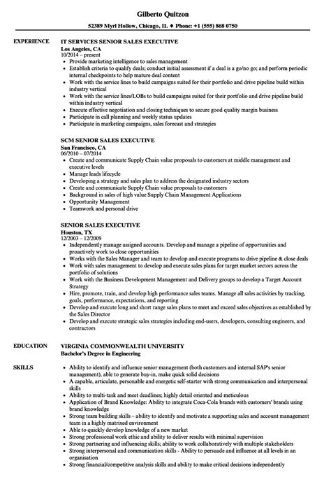 senior sales executive resume sles velvet