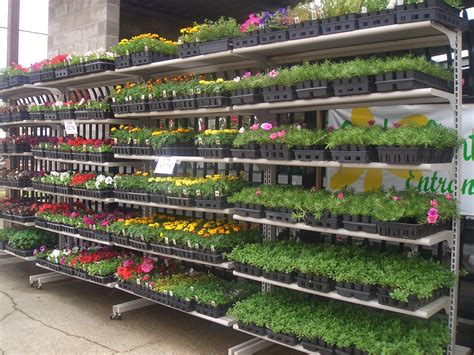Ace Hardware Palm Gardens by Welcome To Ace Hardware Of East Lawn Garden