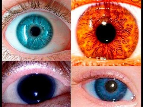 what is the rarest eye color the rarest eye color in the world mirrorz of the
