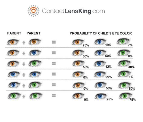 eye color genetics what determines eye color is it genetics
