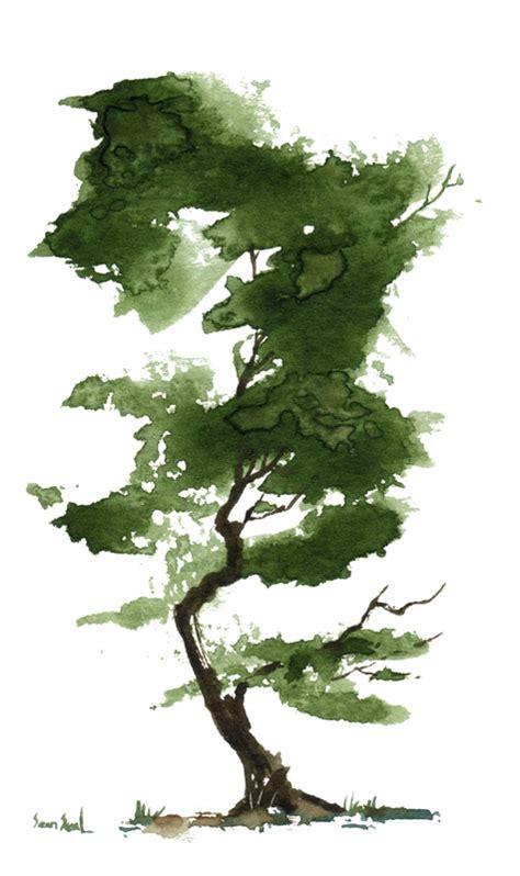 water color tree watercolor tree watercolor