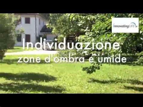 eliminare zecche dal giardino disinfestazione zanzare doovi