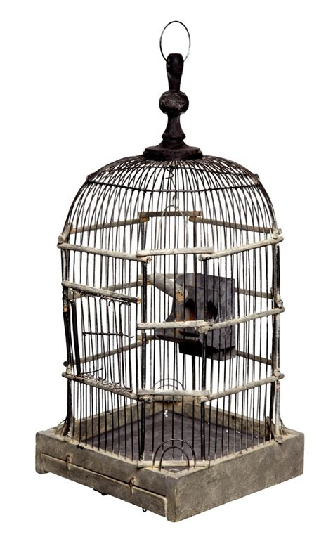 wire bird cages pl 252 ltd objects pinterest