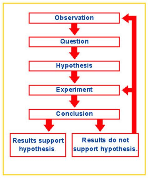 scientific method diagram thesciencebeat licensed for non commercial use only