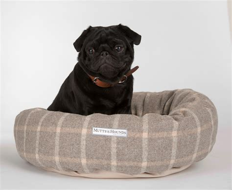 pug beds uk top beds for pugs