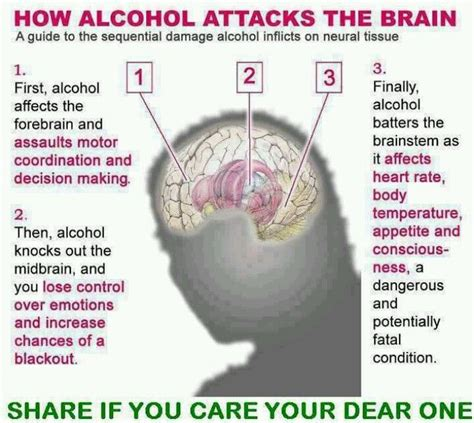 Effects Of Detox On The Brain by How Attacks The Brain Www Nextgencounseling