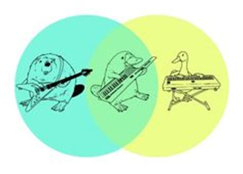 platypus venn diagram 1000 images about platypus madness on