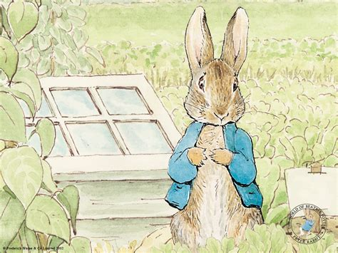 coding rabbit rabbit wallpaper wallpapersafari