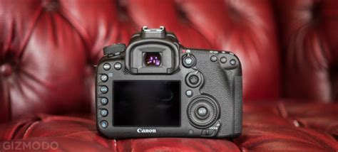 recommended canon 7d mark ii settings photography life canon 7d mark ii the best dslr for sports and wildlife