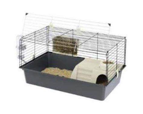 gabbia conigli nani la nuova fattoria conigli nani da compagnia il