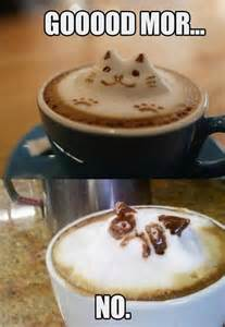 How Do You Clean A Duvet Grumpy Cat Morning Cup Of Coffee Dump A Day
