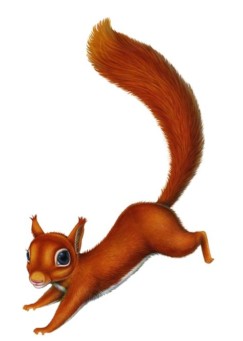 squirrel character for serla on behance
