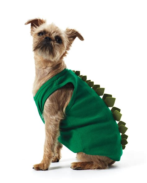 stewarts dogs martha stewart costumes costumes beds and costumes