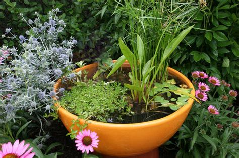 how to build container garden how to make a container water garden the garden glove