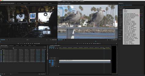 adobe premiere pro preview files crossing the bridge canon xc10 review digital