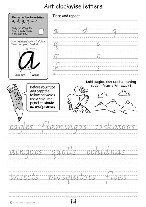 handwriting years 3 4 workbook handwriting conventions vic year 3 teachers 4 teachers educational resources and supplies