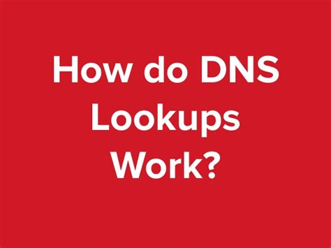How To Do Dns Lookup A Definitive Guide To Dns Time To Live