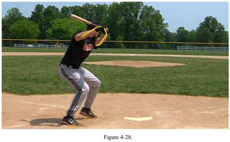 how to swing a bat correctly baseball swing anatomy shoulders muscles push and pull