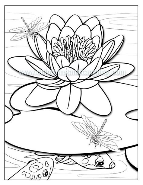 whats   june pack sneak preview adult coloring