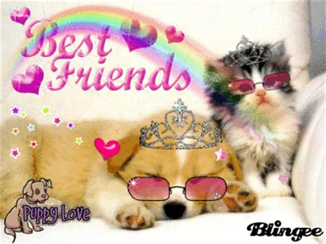 best friend puppies puppy best friends picture 102980015 blingee