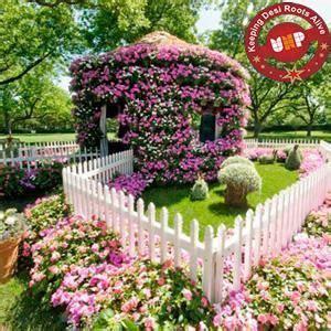 flower house beautiful flower house