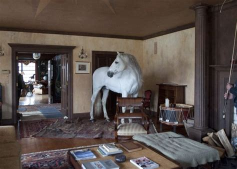 equestrian living room listo in the living room horses