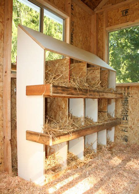 Backyard Chickens Nesting Boxes 25 Best Ideas About Portable Chicken Coop On