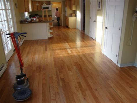 Hardwood Floor Buffing Buffing Out Scratches On Hardwood Floors Home And Space Decor Special Buffing Wood Floors