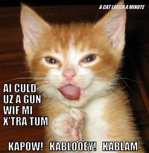 Funniest Cat Memes - 38 funny pictures of cats with captions