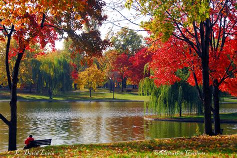 in fall top 6 places in dc to photograph fall foliage washington