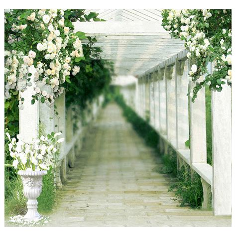 Wedding Backdrop Ebay by Photography Backdrop Wedding Bridal Photo Studio